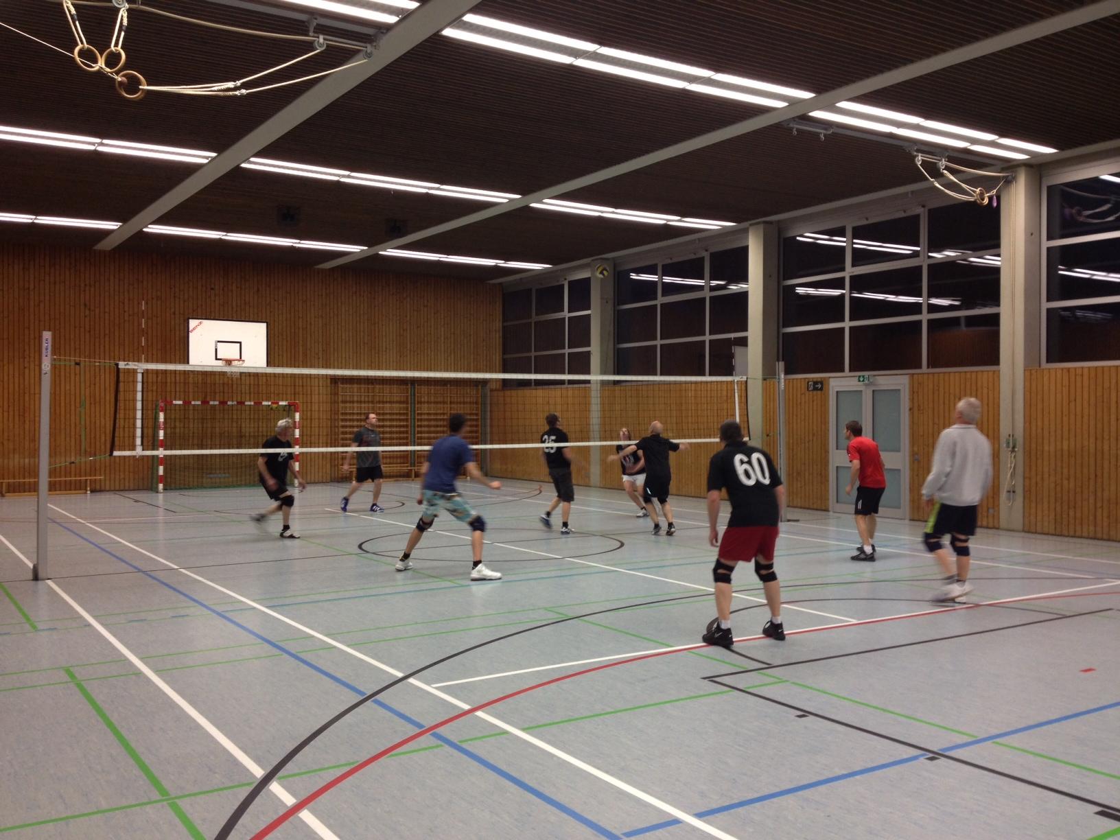 http://user.web-gear.com/sportverein-wippingen/Volley_2.jpg