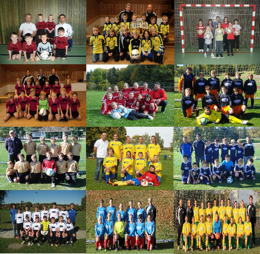 http://user.web-gear.com/sportverein-wippingen/fbj_gesamt.jpg